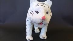 Tigre blanc (face)